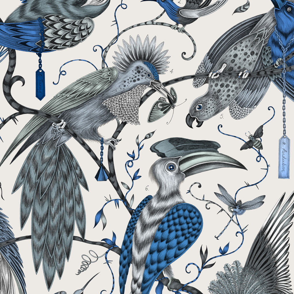 The birds of the Audubon design hand drawn by Emma J Shipley