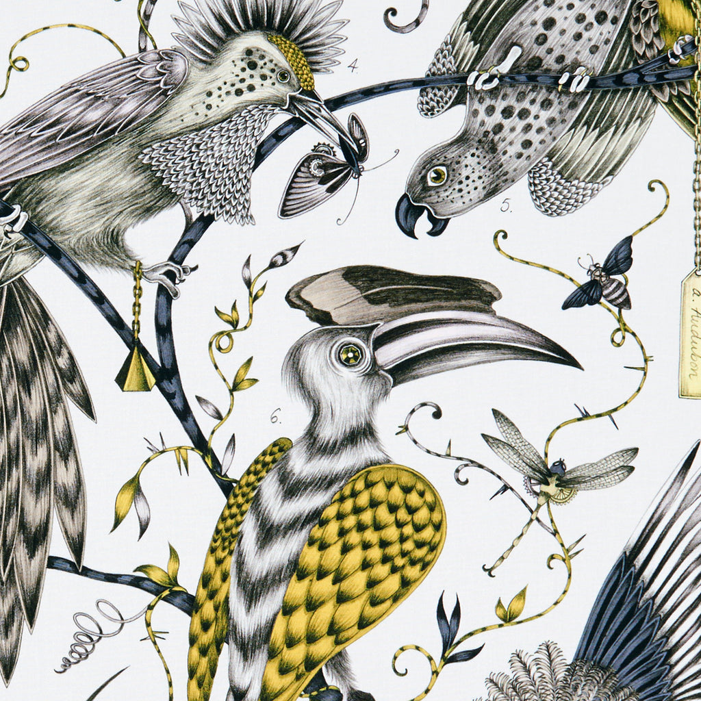 Stunning Audubon design for the Animalia collection designed by Emma J Shipley for Clarke & Clarke featured a flock of fantastical birds