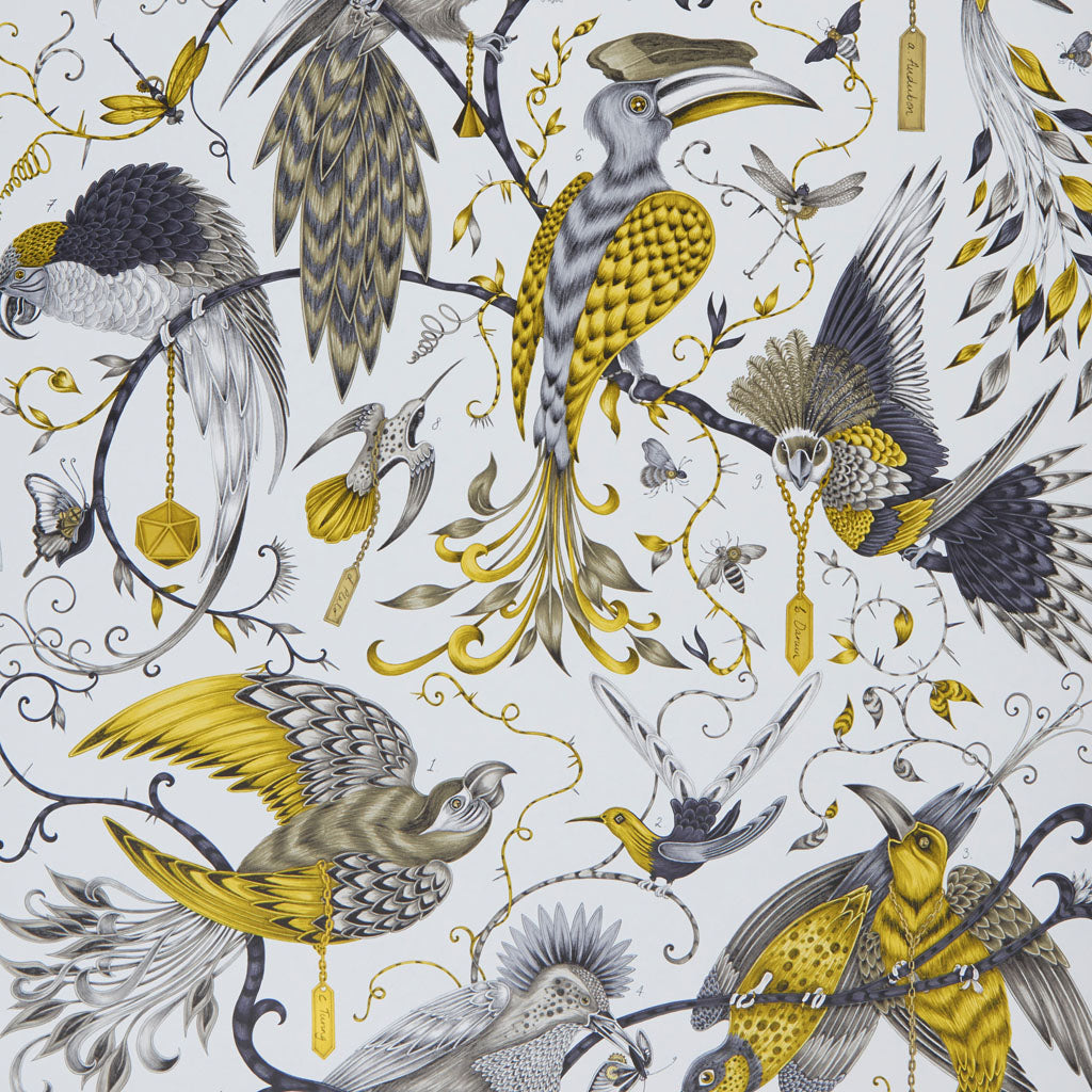 Detail of the hand-drawn Audubon wallpaper with magical birds designed by Emma J Shipley in collaboration with Clarke & Clarke