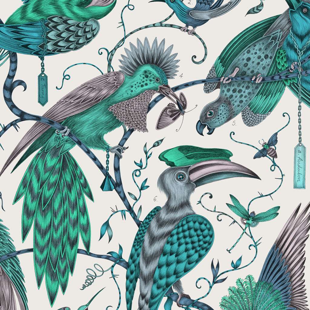 A closer look at the Audubon Placemat, hand drawn and designed by Emma J Shipley in collaboration with Jamida