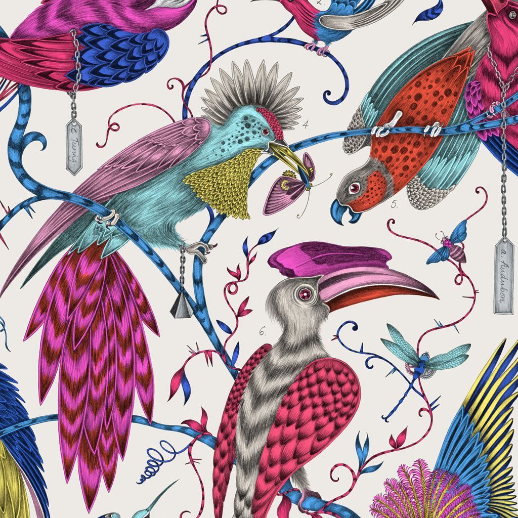 The original hand-drawn illustration behind the Audubon design, by Emma J Shipley