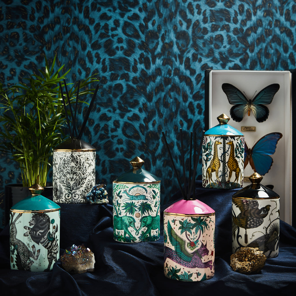The Emma J Shipley Candle and diffuser range showing all designs - the range features designs with giraffes, jaguars, lions and birds - The scents of the collection have been created by Bahoma and inspired by the designs of each candle