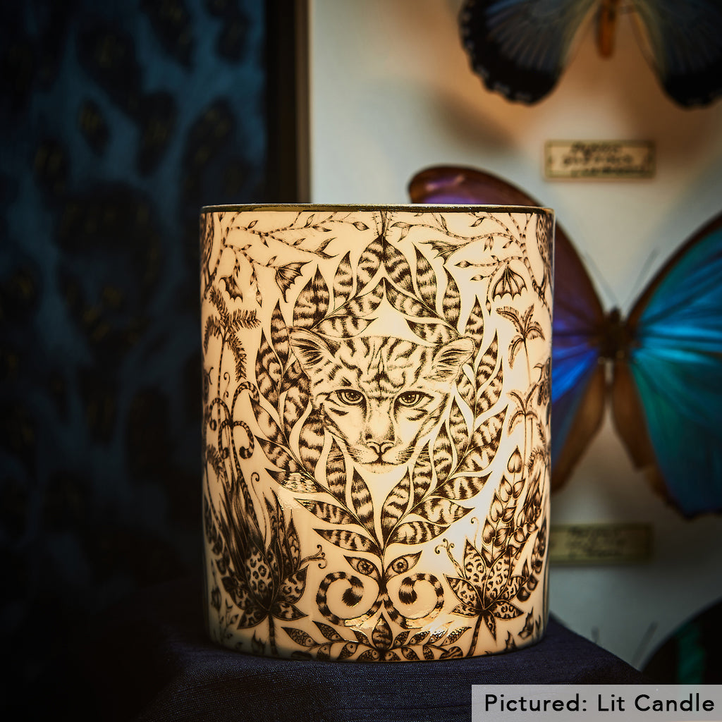 The Bone China of the Amazon candle allows the soft glow of the wick to come through and allow an atmospheric glow to be thrown into your room, along with the calming scents of the candle