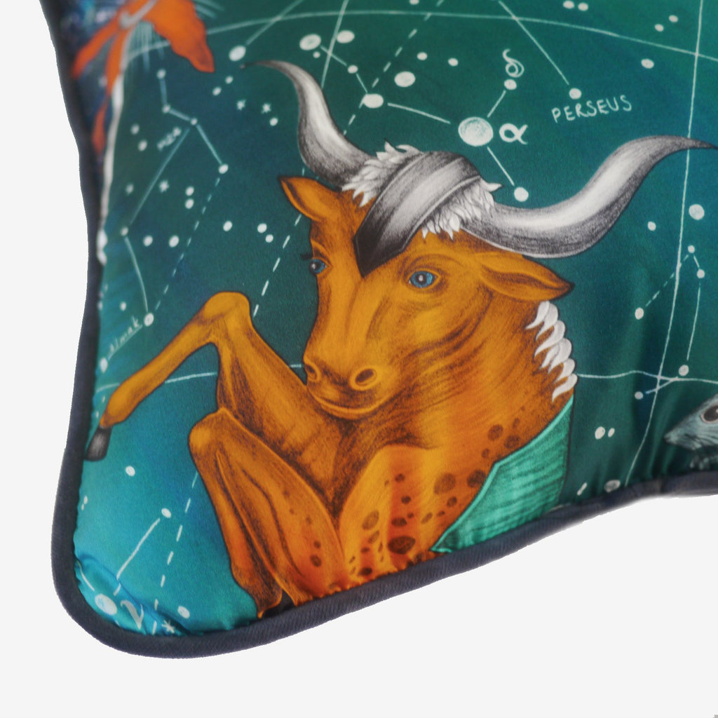 A detailed close-up of the hand-drawn bull in amour that features on Emma J Shipley's luxury Constellation Cushion