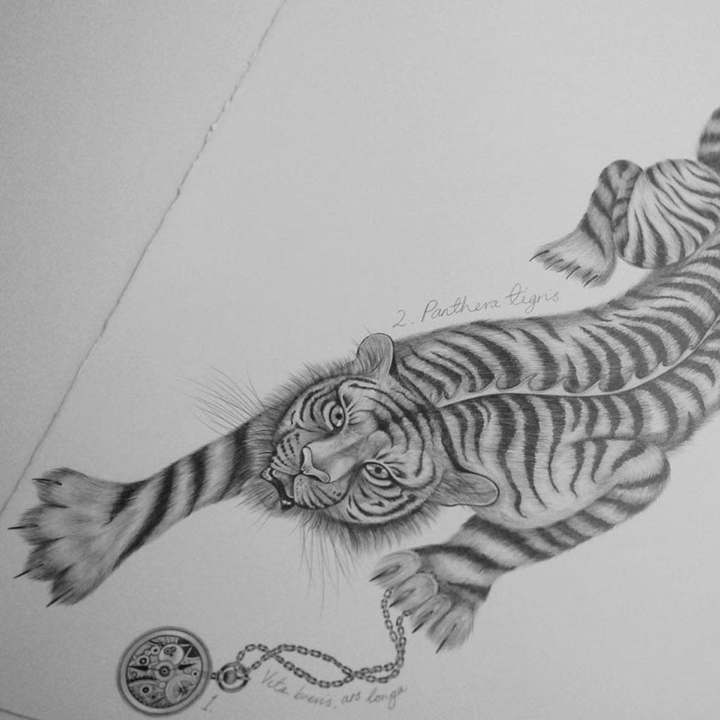 Detailed drawing of a magical Tiger from an Emma J Shipley jacquard woven scarf