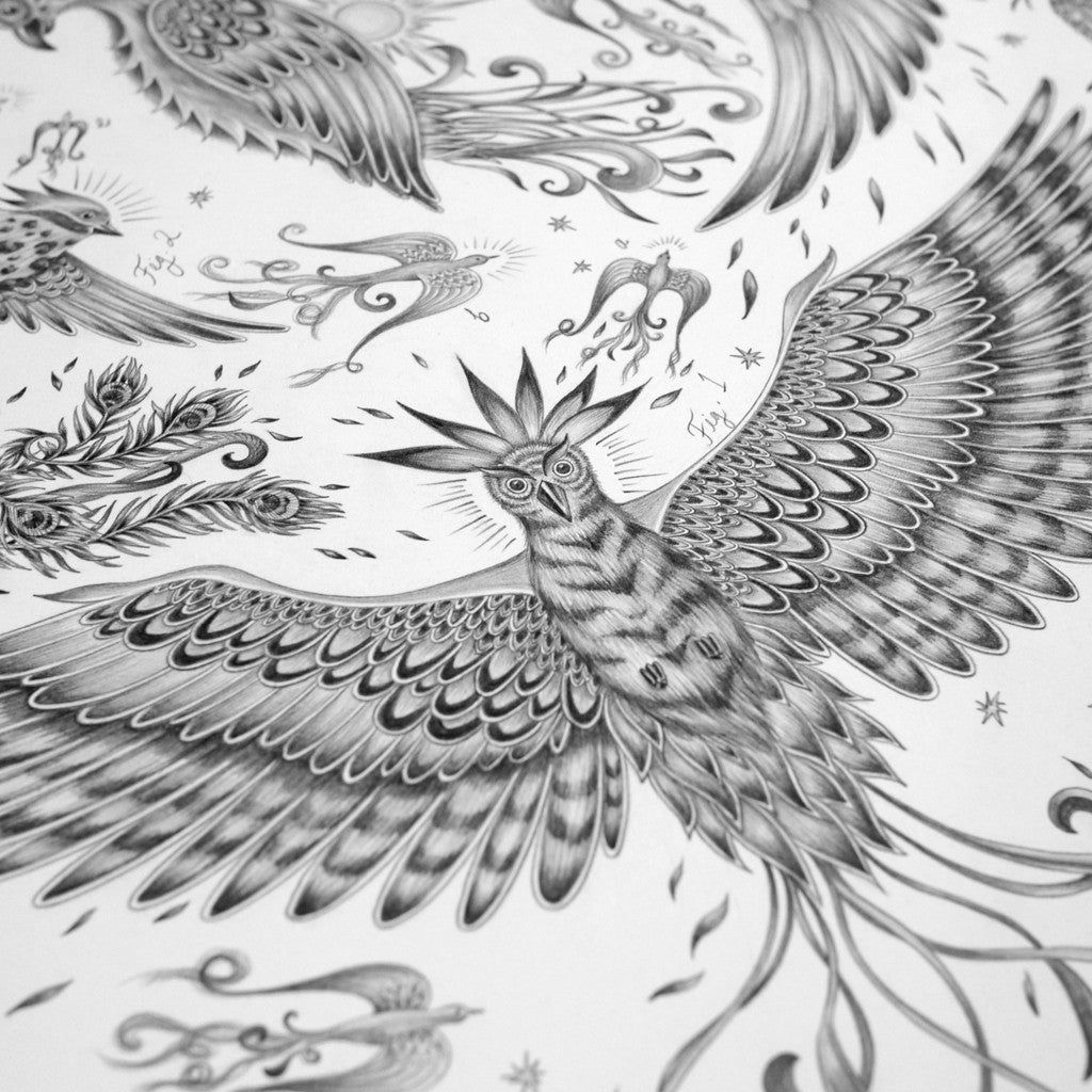 The hand-drawn illustration of the Phoenix design inspired by Watership Down, by luxury designer and illustrator Emma J Shipley