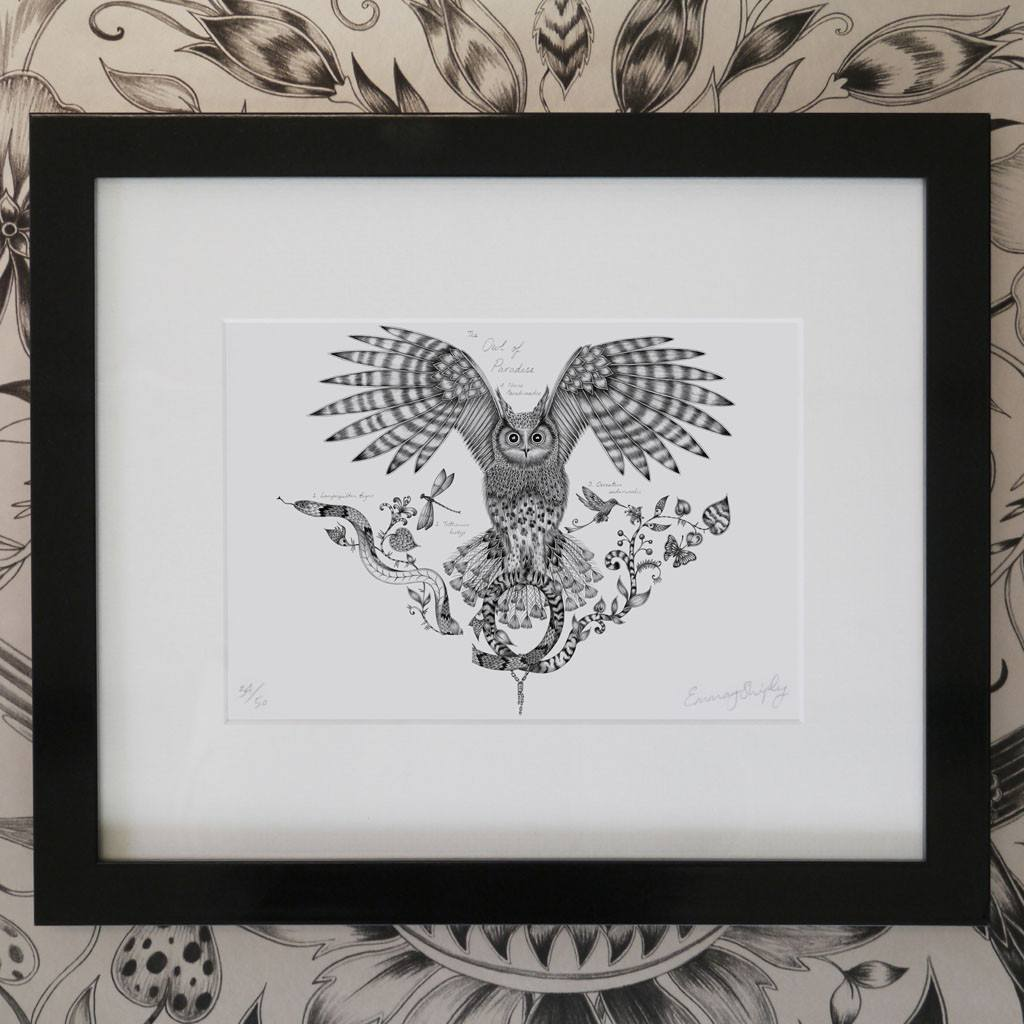 Owl of Paradise Mini Print - Black Frame