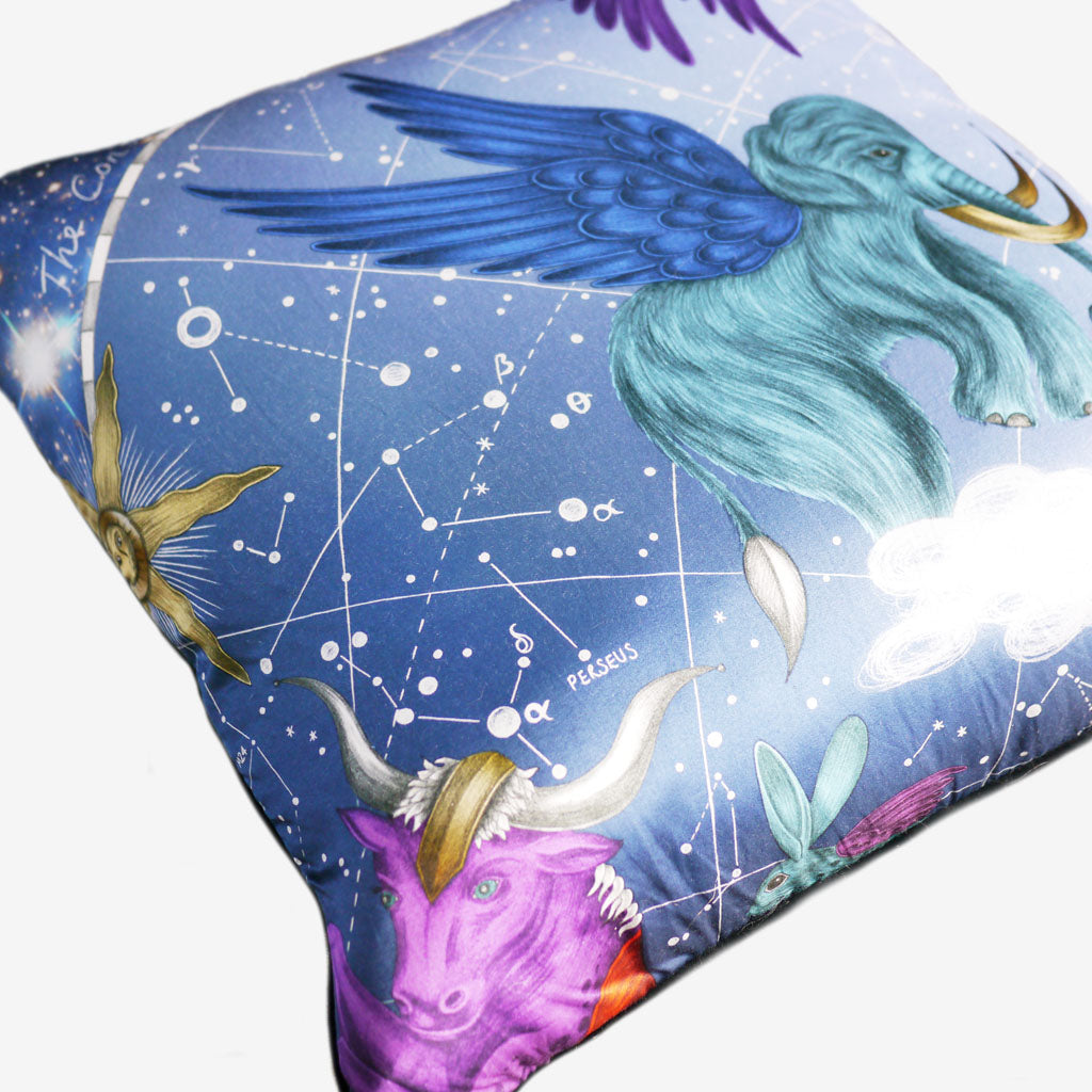 Detail of the beautiful Constellation Large Cushion by Emma J Shipley