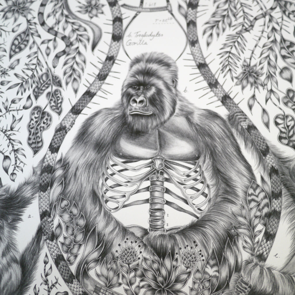 How to draw a gorilla, by luxury designer and illustrator Emma J Shipley.