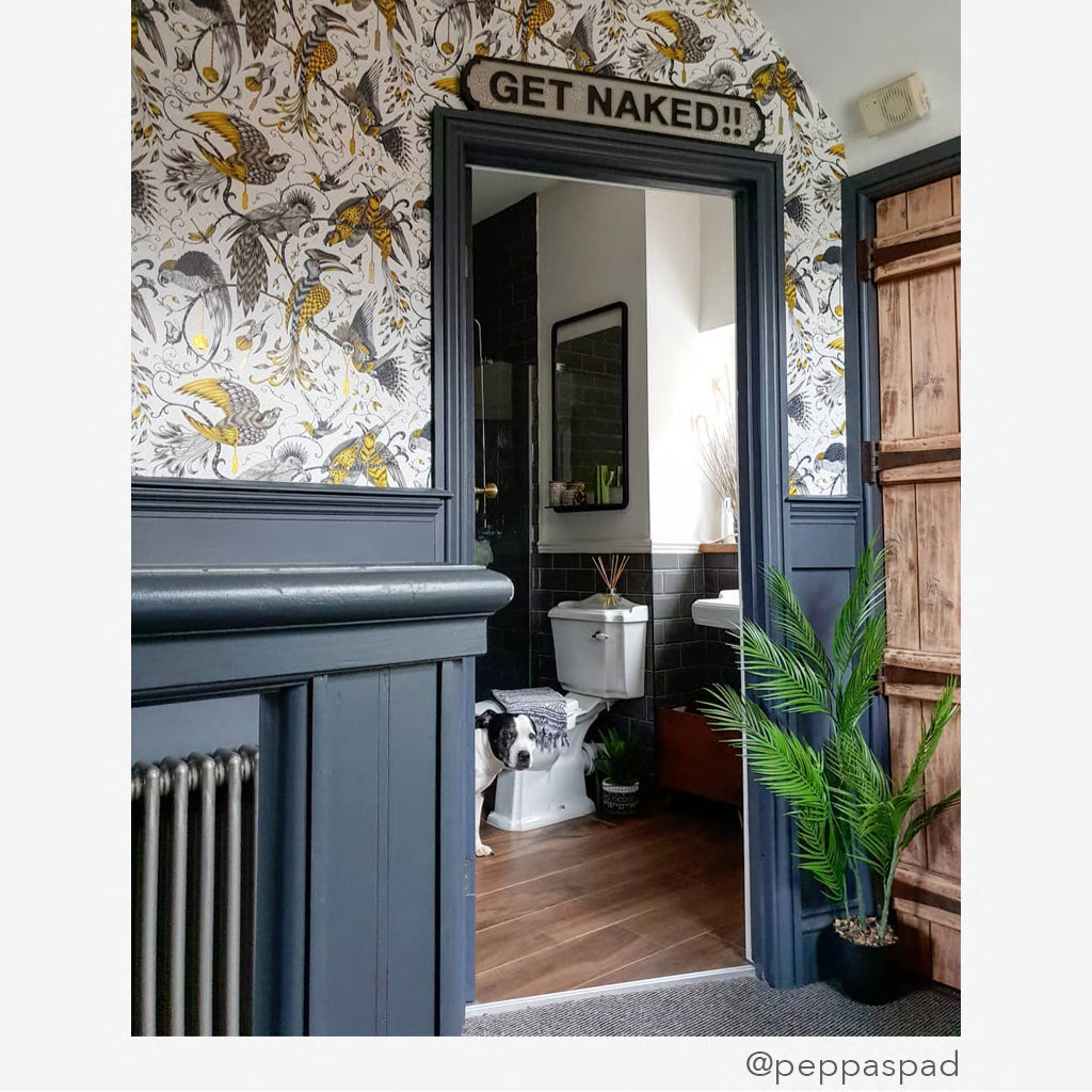 Pair the Audubon Wallpaper with any colour and accents, using a dark grey gives it a deeper look but still allows for a bright room