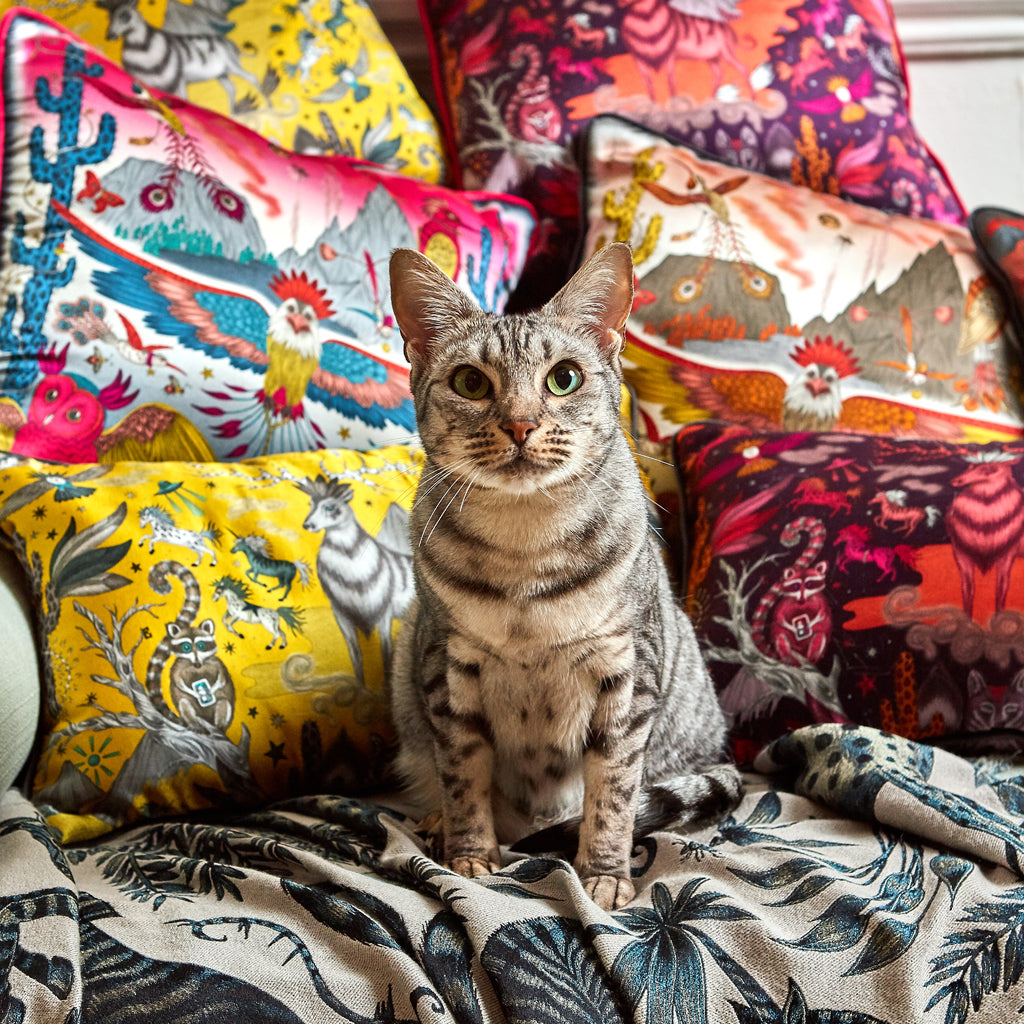 A close up of the group shot of the Frontier and Wild West Silk Cushion collections, the Orange Frontier Silk Cushion can be paired with or used on its own