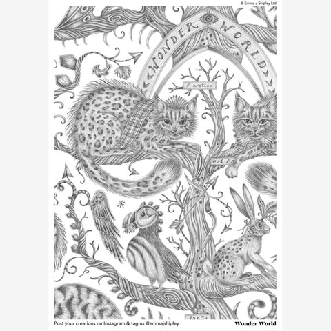 The Emma J Shipley Wonder World Print in colouring form, the perfect project to inspire, occupy and just to add a little bit of animal magic to life