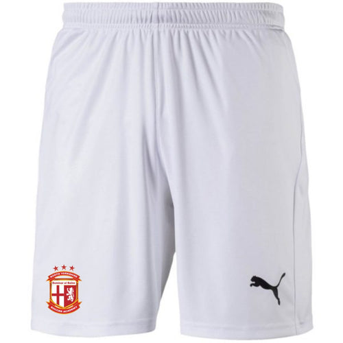 PUMA NYSA TRAINING SHORTS