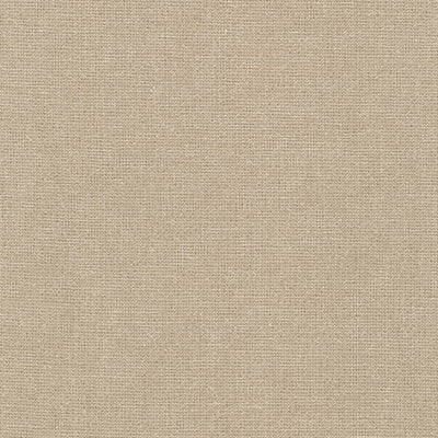 Essex Linen - Metallic in Oyster - Robert Kaufman Fabrics - E105-1268 - Half Yard