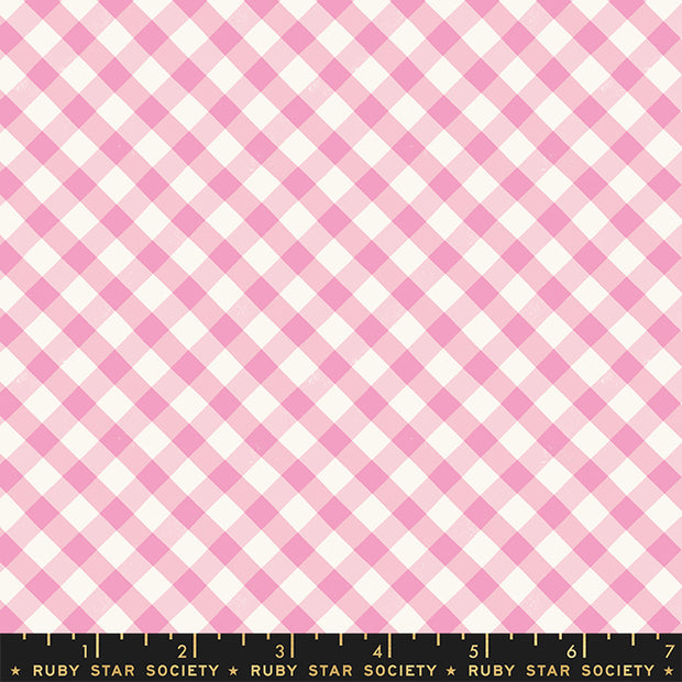 Food Group - Painted Gingham in Orchid - Ruby Star Society - RS5044-12 - Half Yard