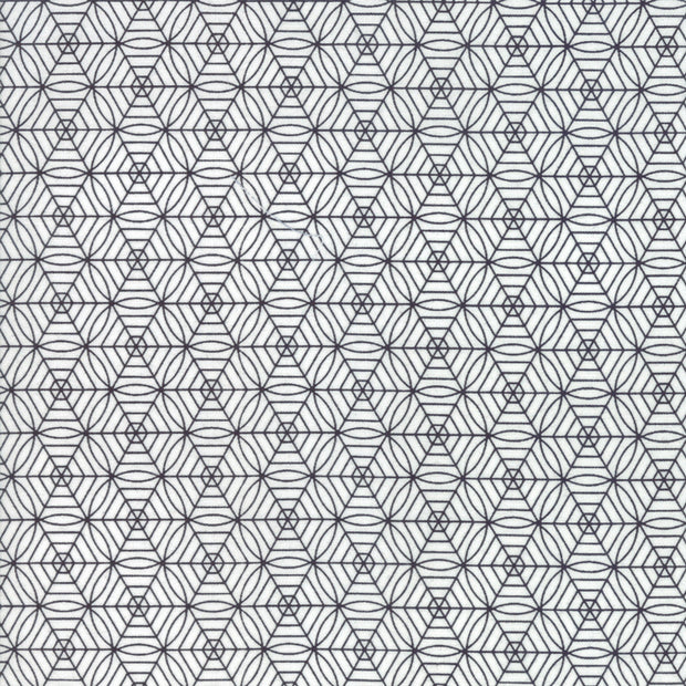 Midnight Magic - Spiderweb in Ghost - April Rosenthal for Moda - 24085 11 - Half Yard