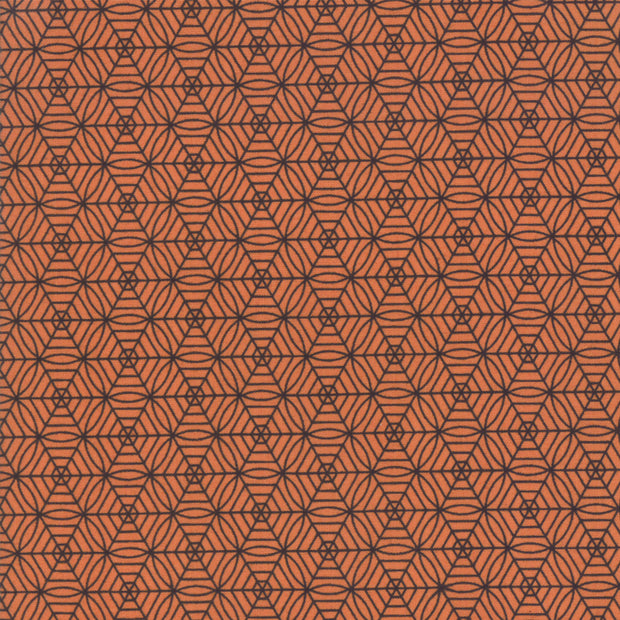 Midnight Magic - Spiderweb in Pumpkin - April Rosenthal for Moda - 24085 12 - Half Yard