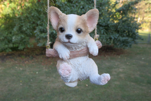Chihuahua Puppy Hanging on a Swing.