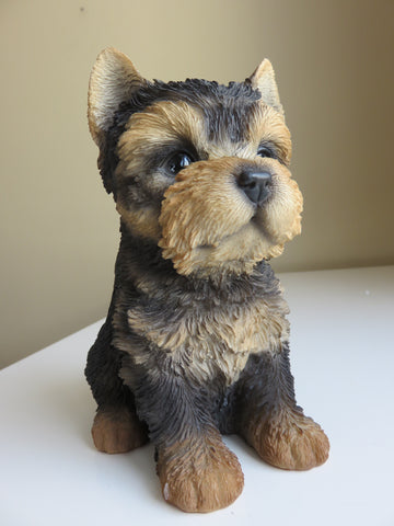 YORKSHIRE TERRIER PUPPY 6.5 IN. DOG SITTING