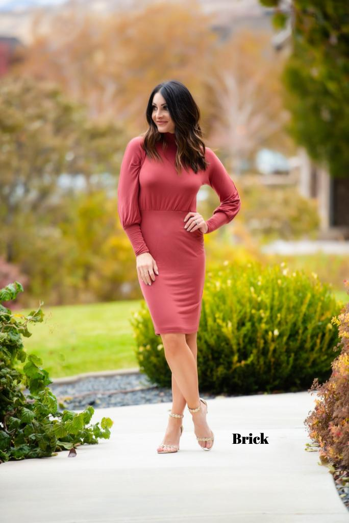 Brigitte Brianna Turtle Neck Jersey Dress - SexyModest Boutique