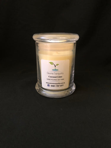 Coconut lime/soy/wax/ large/candle