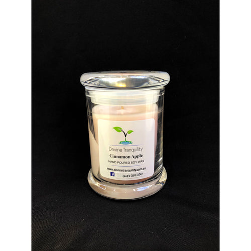 Cinnamon Apple/soy/wax/candle large