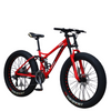 26 inch 21-speed variable speed off-road beach snowmobile adult super wide 4.0 big tire mountain bike