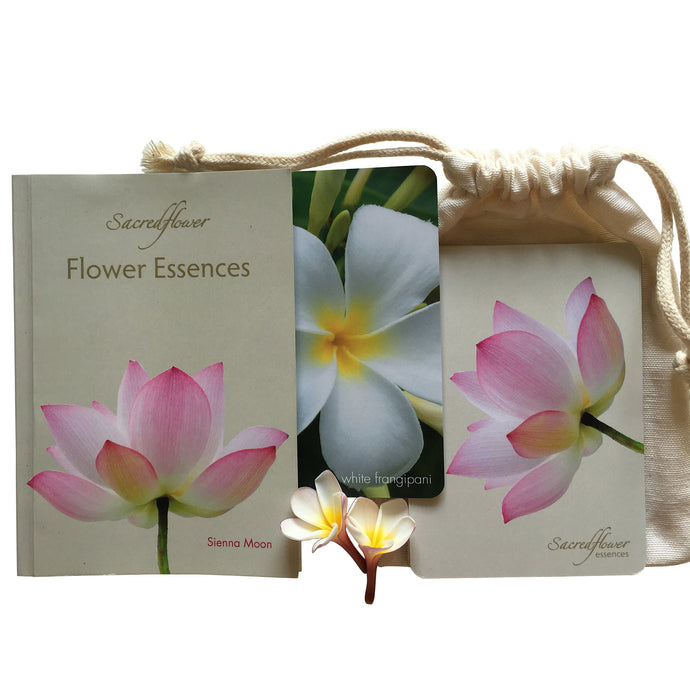 Flower oracle. Flower meanings. Australian flower essences. flower essence remedy. sacred flower essences