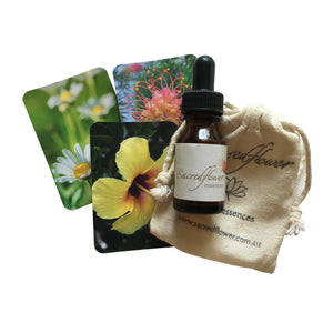 flower essence remedy