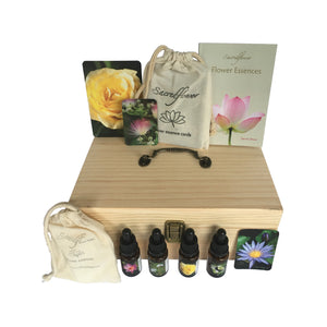 Australian flower essences. flower essence remedy