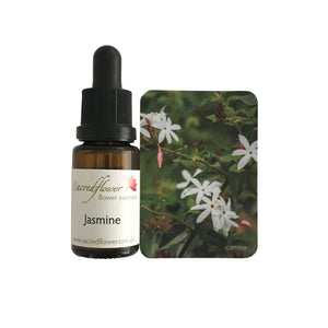 Australian flower essences. jasmine flower essence remedy. sacred flower essences