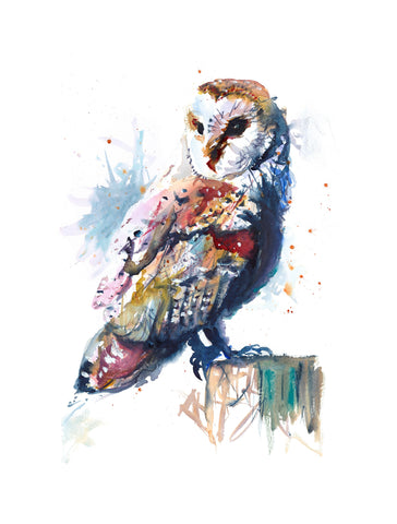 'Barn Owl' Greetings Cards - Pack of 4