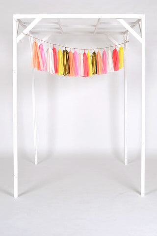 Tissue Paper Tassel Wedding and Party Decoration
