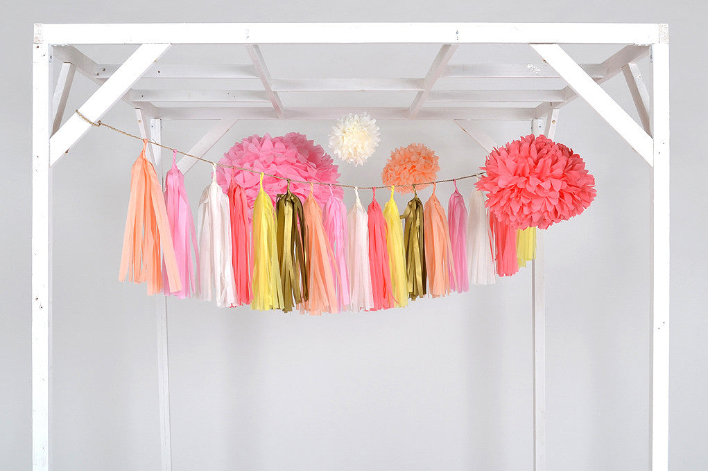 Paper pom poms & tassel wedding and party decoration