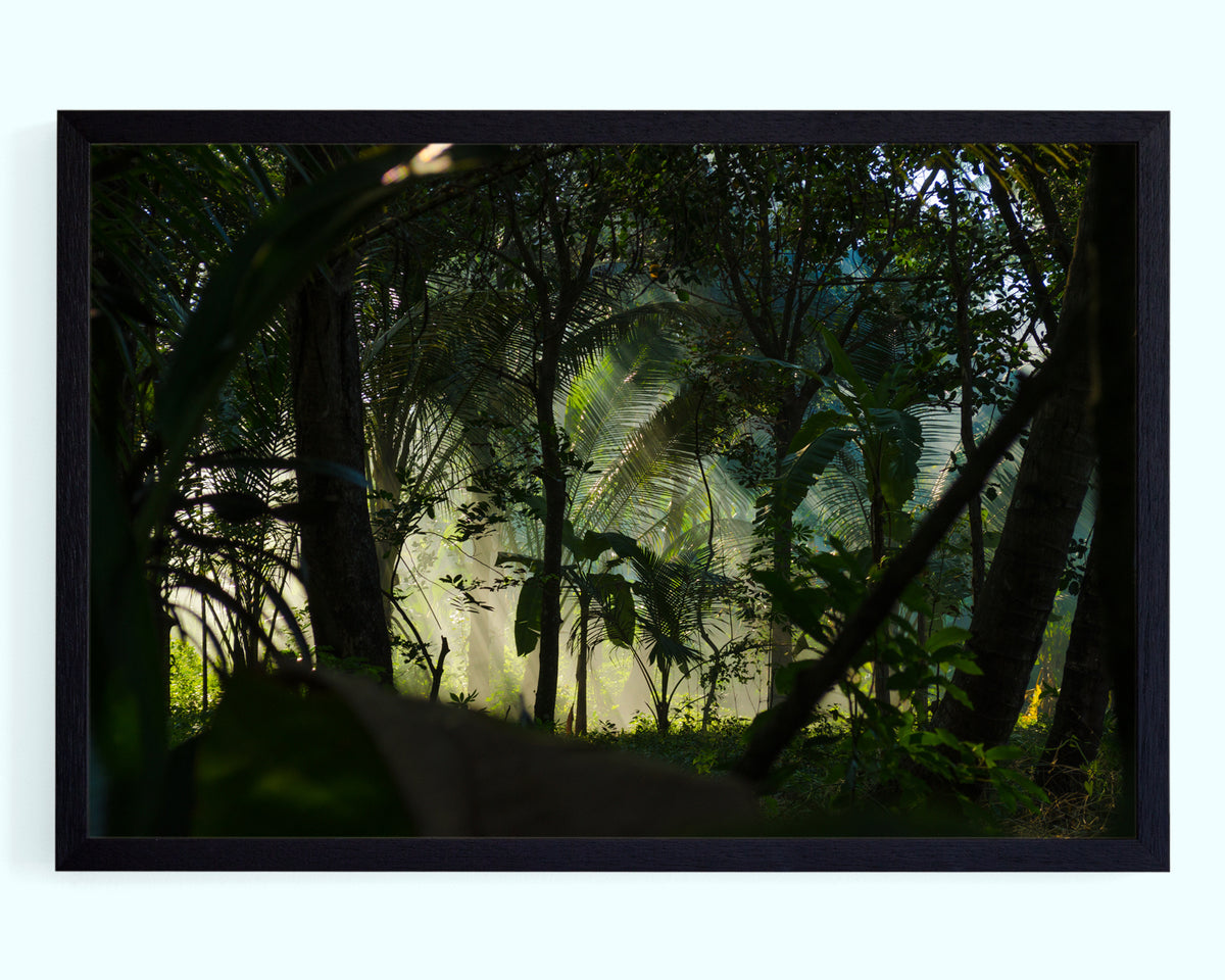 Deep Jungle Art Print