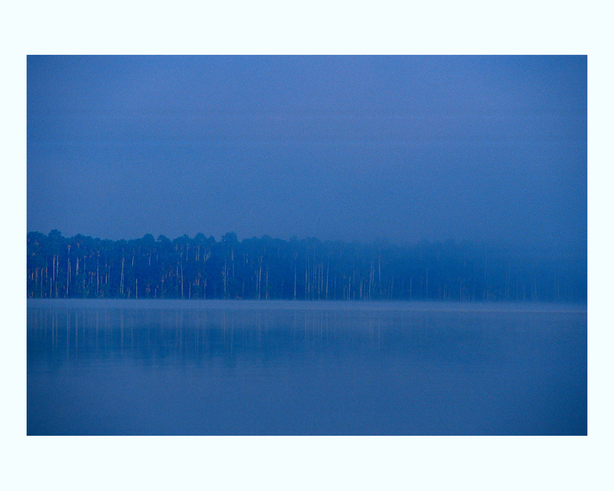 Lake Sandoral, Peruvian Rainforest Art Print