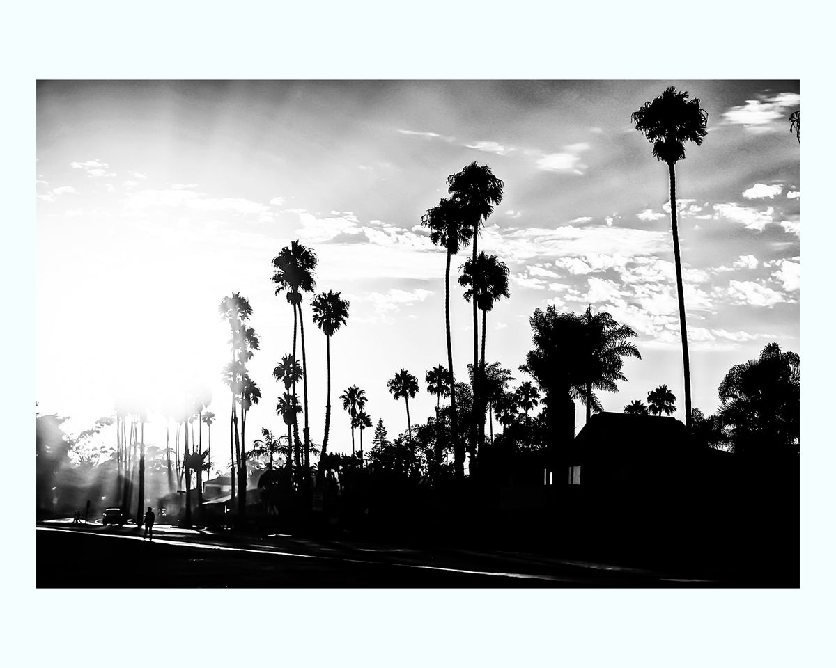 Palm Tree Drive Art Print