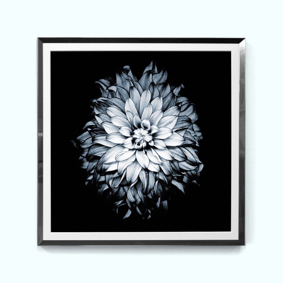 Silver Flower Art Print Set