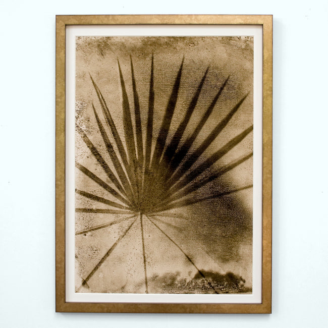 Sepia Palmetto Palm Art Print
