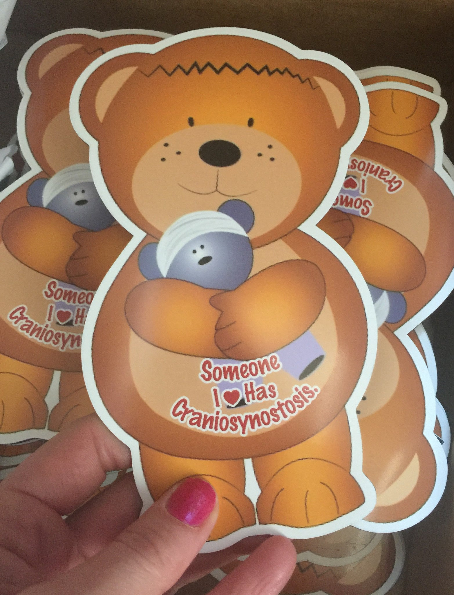 Cranio Bear Car Magnet