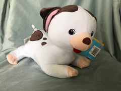 Brown and white Dog with scar