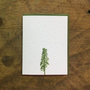 Conifer Tree Letterpress Holiday Cards by Green Bird Press