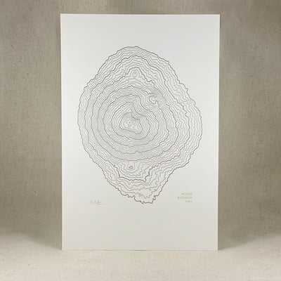 Mt Bachelor Topographic Map by Green Bird Press