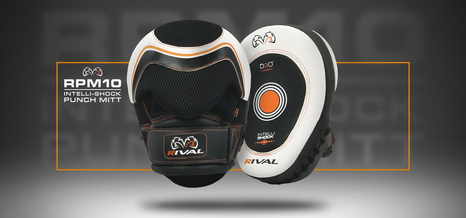 Rival RPM10 Punch Mitts