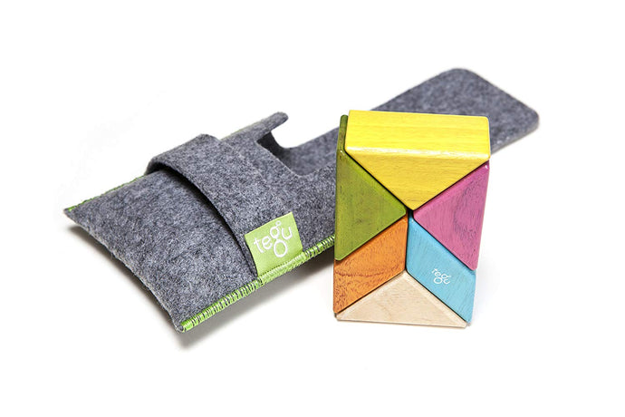 PRE-ORDER: 6 Piece Tegu Pocket Pouch Prism Magnetic Wooden Block Set