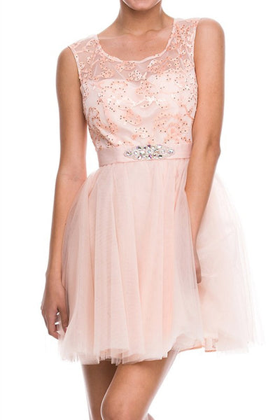 Elegant Expectations Party Dress in Pink