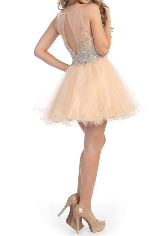 Heart Shaped Box Party Dress in Nude