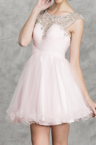 Petit Trianon Party Dress in Icy Pink