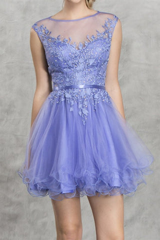 Periwinkle Palais Party Dress