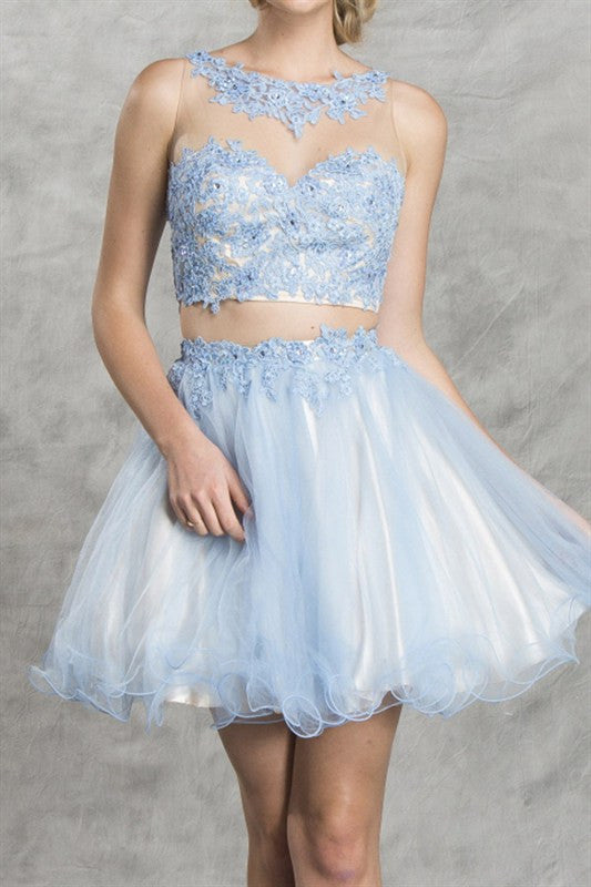Petals of Periwinkle Two Piece Party Dress